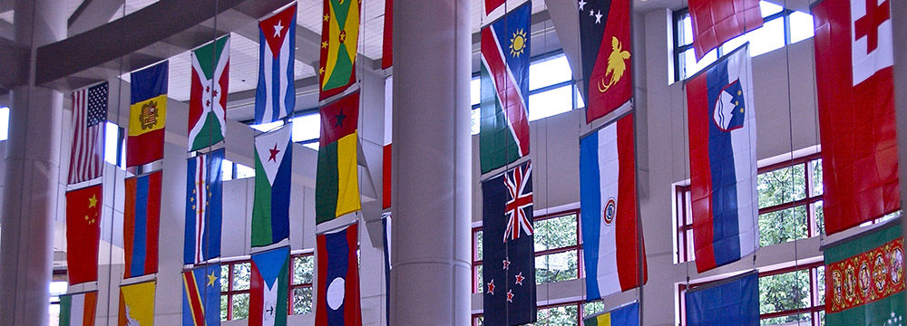 Hgsc Flags Image